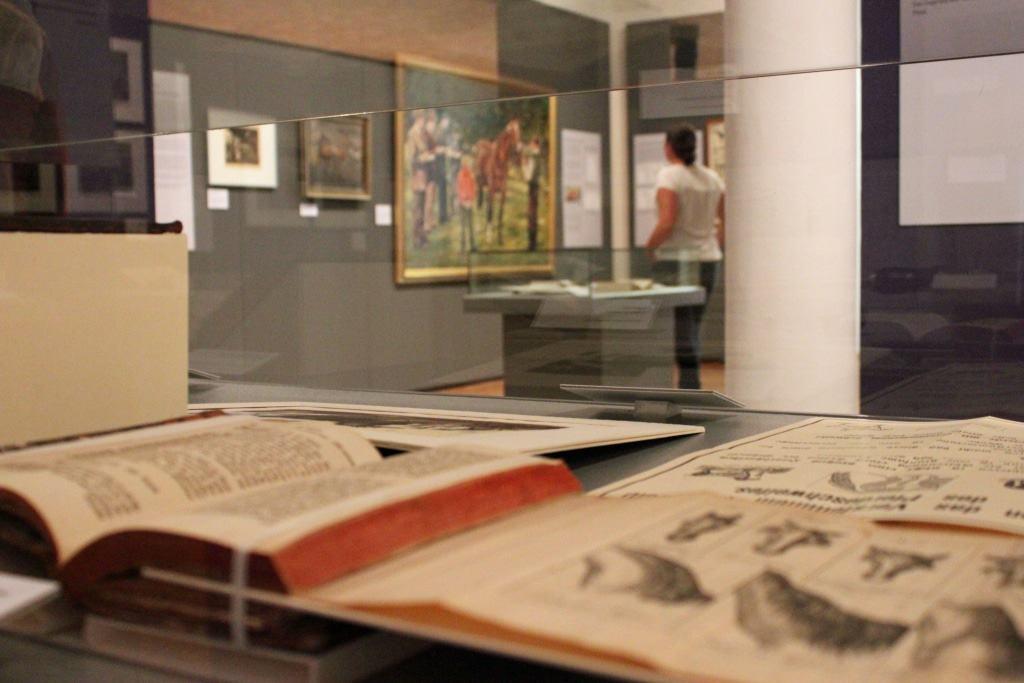 """Blick in die Ausstellung """"Das perfekte Pferd?"""" Foto © Deutsches Pferdemuseum"""