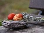 Osterzeit - Nest mit gefärbten Ostereiern und Weidenkätzchen auf Holztisch
