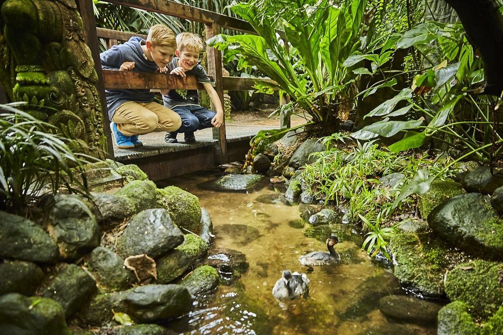 In der Regenwaldhalle Foto: Weltvogelpark Walsrode