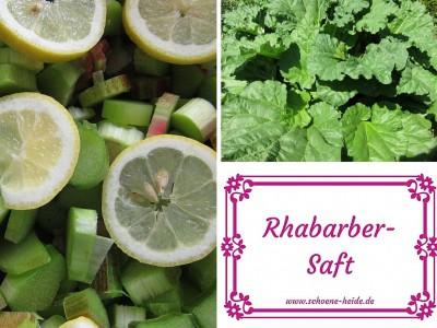 Collage Rhabarbersaft: Flaschenetikett, Rhabarberpflanze, Rhabarberstücke mit Zitronenscheiben