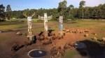 In den Wildarealen stehen interaktive Bäume mit Funktionen wie Futterkanonen, Tränken oder Bürsten, wie hier bei den Bisons. Foto: Serengeti-Park Hodenhagen