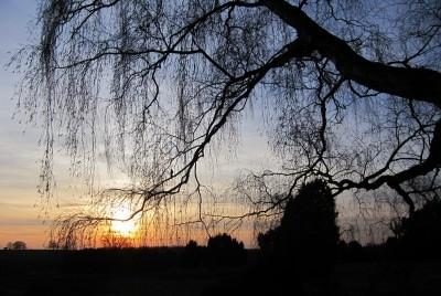 Sonnenuntergang über der Lüneburger Heide
