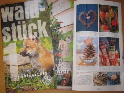 Kostenloses Magazin der Landesforsten Niedersachsen für die ganze Familie: Waldstück