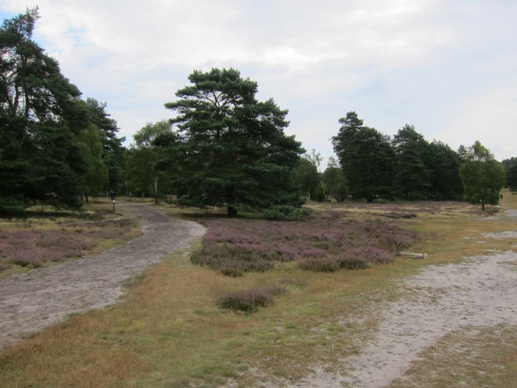 Heidepanoramaweg in der Misselhorner Heide - naturbelassener Sandweg