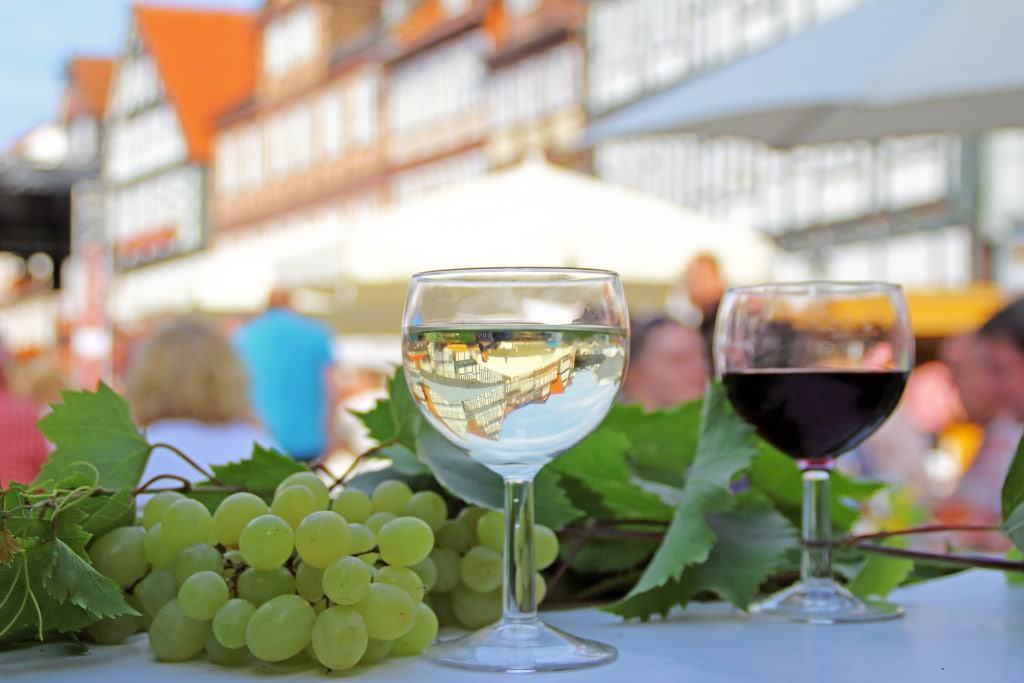 In Celle gibt es nicht nur einen Weinmarkt im Juli sondern auch einen Weinberg (Copyright: Celle Tourismus und Marketing GmbH, Fotografin: Nicole Mihelic)