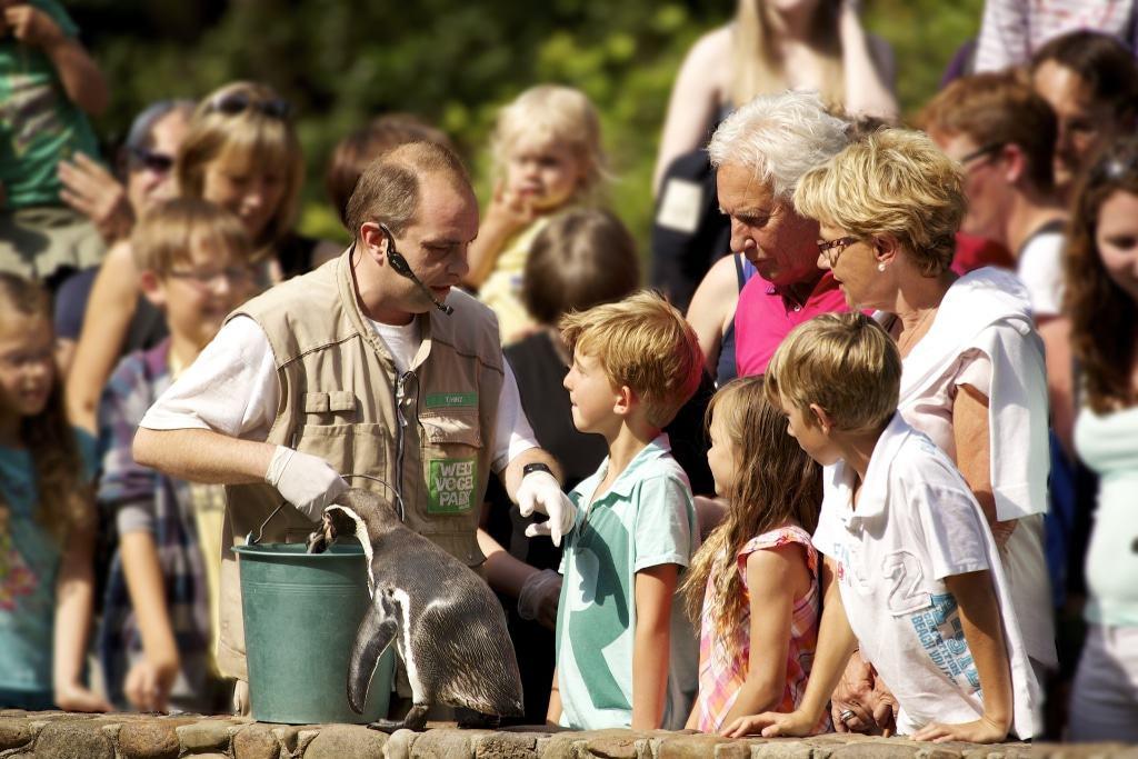 Pinguinfütterung   Foto: Weltvogelpark Walsrode