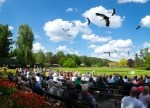 Finale der Flugschau im Weltvogelpark Walsrode