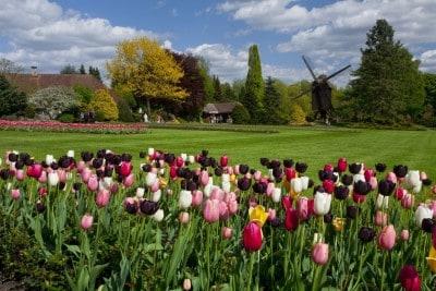 Immer einen Besuch wert: die wunderschönen Parkanlage im Weltvogelpark Walsrode