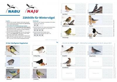 Zählhilfe zur Stunde der Wintervögel 2017 von NABU und LBV